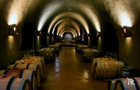 Jarvis Winery - Wine Cave